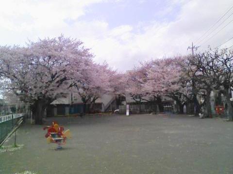 20110409.jpg
