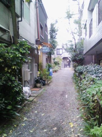 20091123shimikitazawa3.jpg