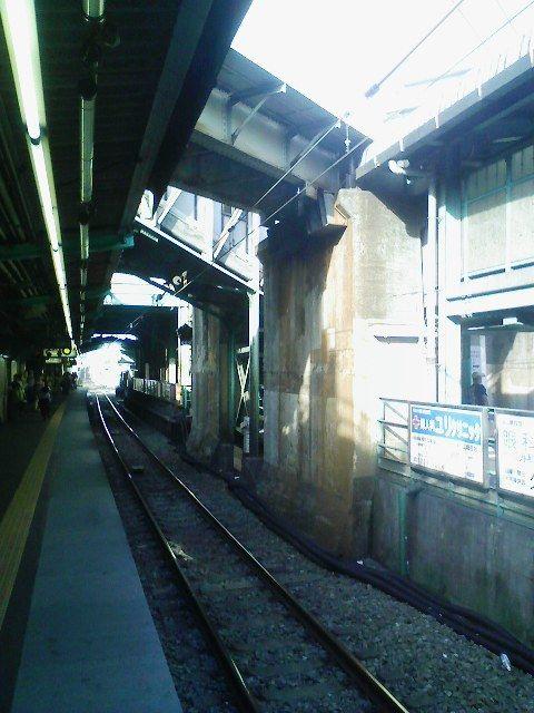 20100828shimokita4.jpg