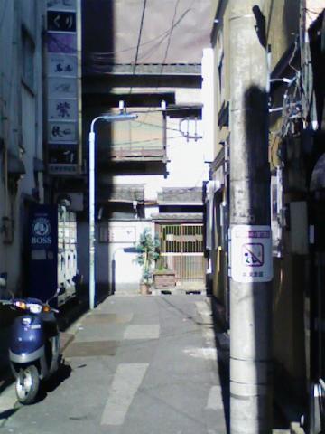 20100110ameyoko1.jpg