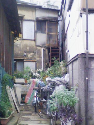 20091123higashi-kitazawa2.jpg