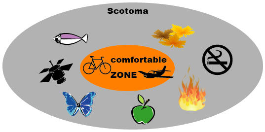 scotoma