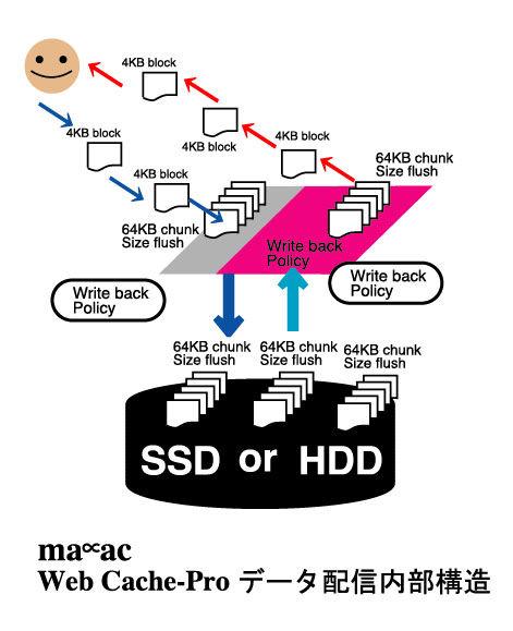maac_web