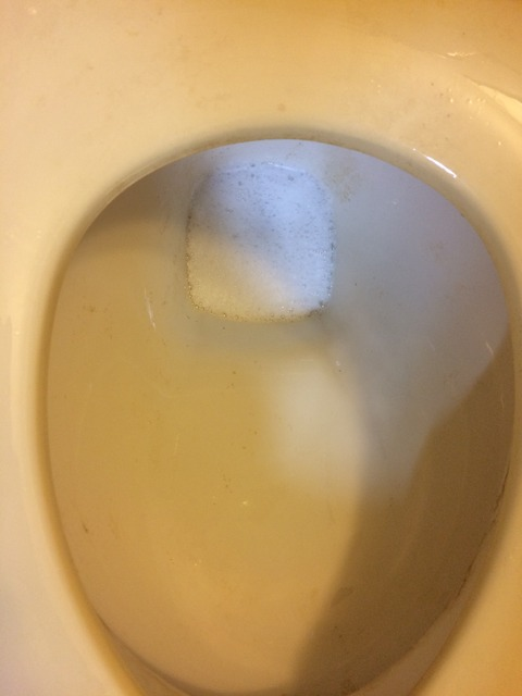 堕天使トイレ実験アフター