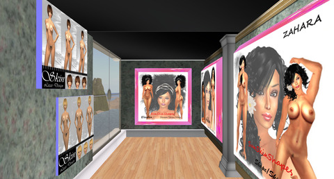 2nd life sex skins galleries 581