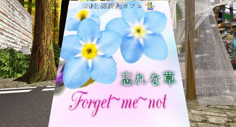 [SSJ公認新人カフェ] 忘れな草 - Gaeta V