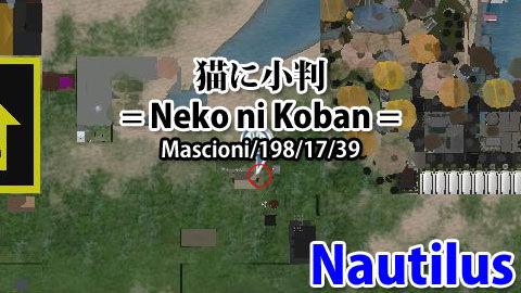 170113nk99