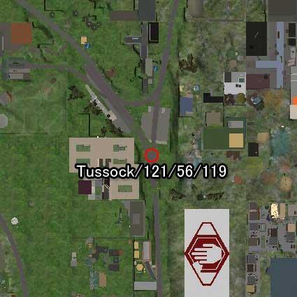 100831tussock99