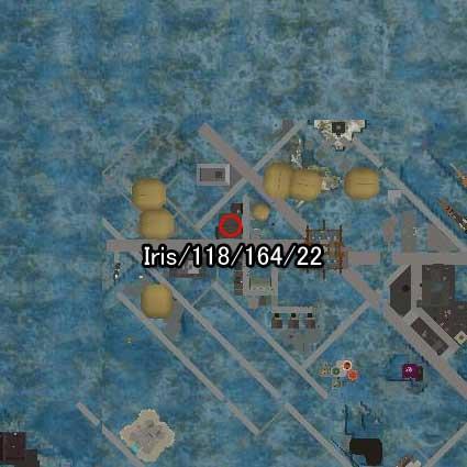 101024ika99