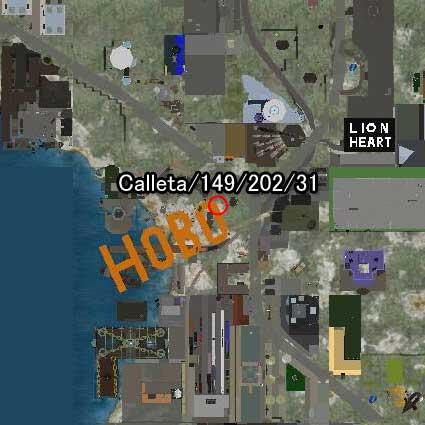 101029hobo99