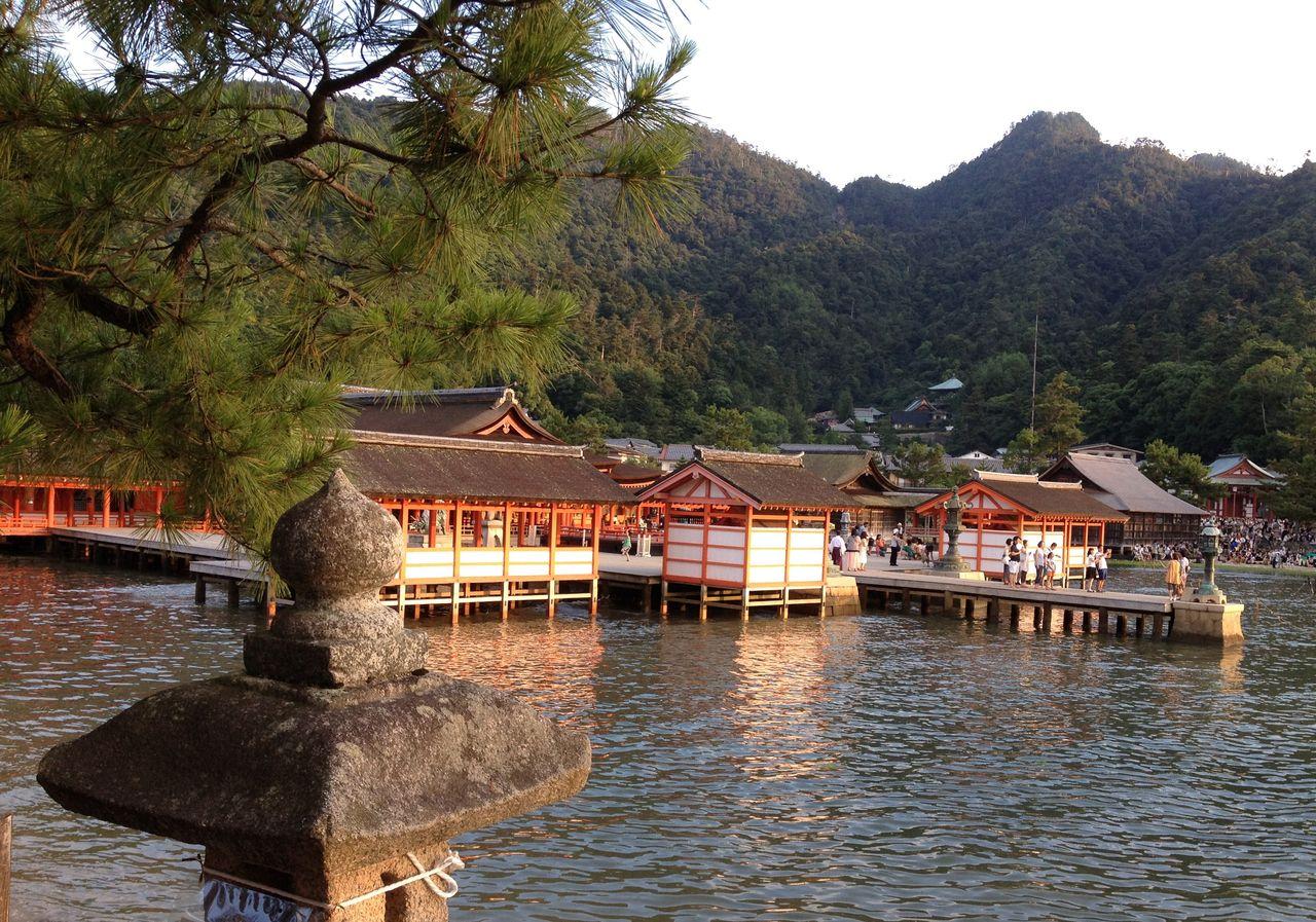 厳島の画像 p1_22