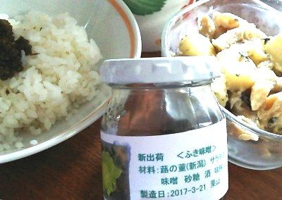 170524ふき味噌2