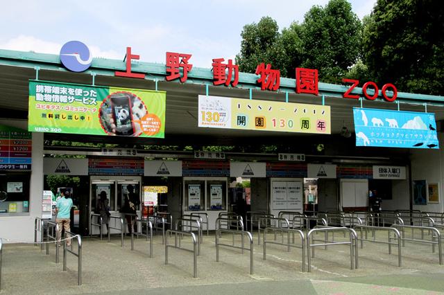 【朗報】上野動物園「学校にいきたくないと思い悩んでいる子へ。うちに逃げてくればいいよ」