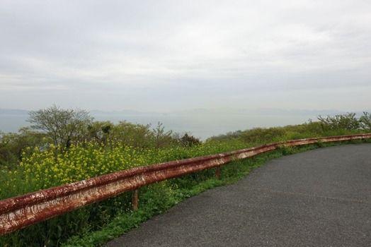 山登ったら年季入ったネッコ居たンゴ(※画像あり)