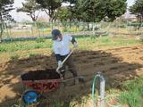 2014,3,29かぶちゃん農園の清水さん 003