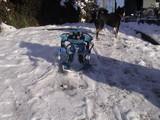 スキー-1