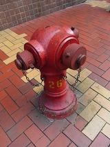 イギリス式の消火栓?が異国情緒をかもしだす