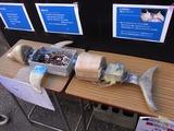 東京工業大学附属科学技術高校の定番研究の魚ロボット