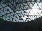 ドームのフレームから木漏れる太陽の光