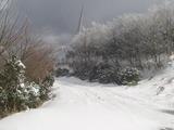 三重の山奥は大雪だった。積雪は20cm