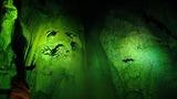 洞窟の鍾乳石が怪奇な顔にも見える