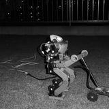 芝刈りテスト夜白黒