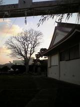 荘厳な神社の境内