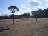 中央公園広場