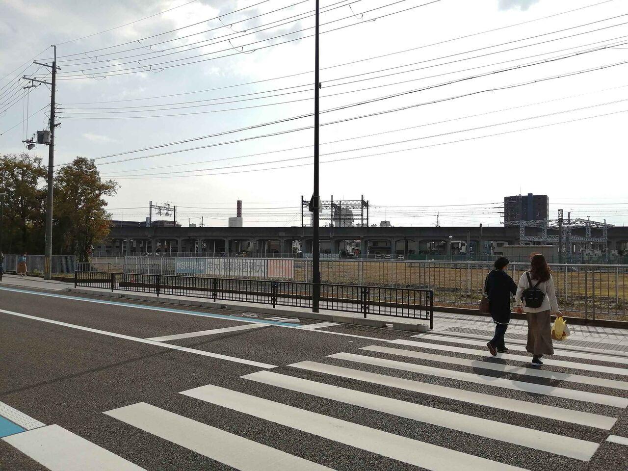 大学 大阪 医科 薬科