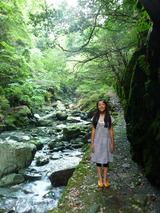 渓谷を登っていくと幻想的な美しさ!