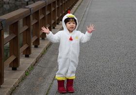 0003  '17  01-02  八坂神社