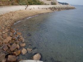 2011-11-23蒲刈5