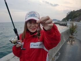 2011-11-23蒲刈9