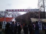 赤塚梅祭り