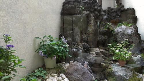 笹乃雪 中庭
