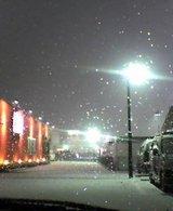 また雪。白く覆われる中に浮かび上がる店の赤い壁
