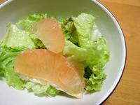 1606 グレープフルーツ サラダ B