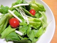 1510 サラダ菜&チーズ B