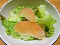 1606 グレープフルーツサラダ A