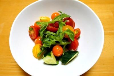 1807 トマトときゅうりのサラダ A