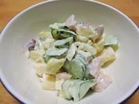 1510 サラダ きゅうり&ソーセージ A