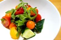 1807 トマトときゅうりのサラダ B