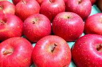 1712 リンゴ B