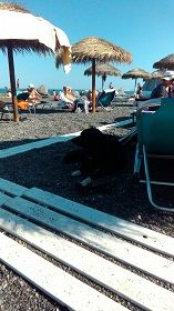 ブラックビーチ