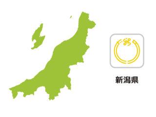 【新潟知事選】園児に手伝わせた保育士ら処分 自治労の依頼で野党候補応援の絵描かせる