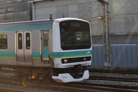 DSC_0599