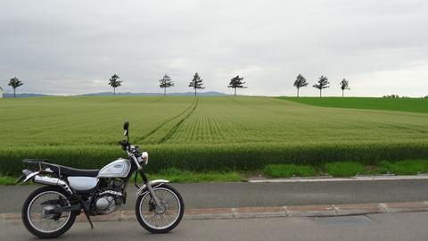 18.07.14女満別メルヘンの丘
