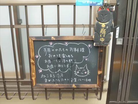 猫のお店〜