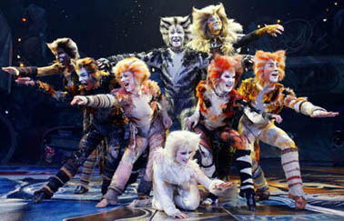 cats-musical-260003_500_321