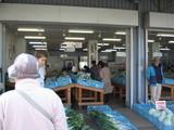 JA野菜販売1